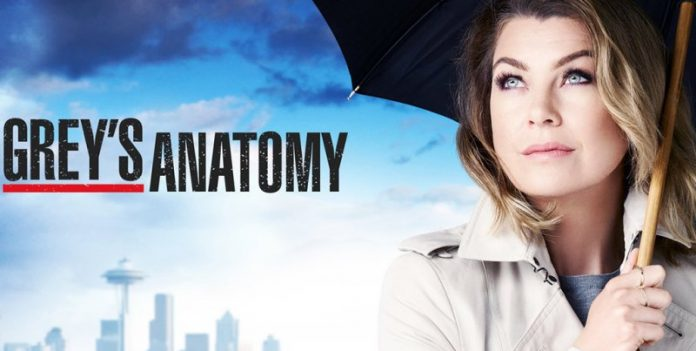 Grey's Anatomy 13