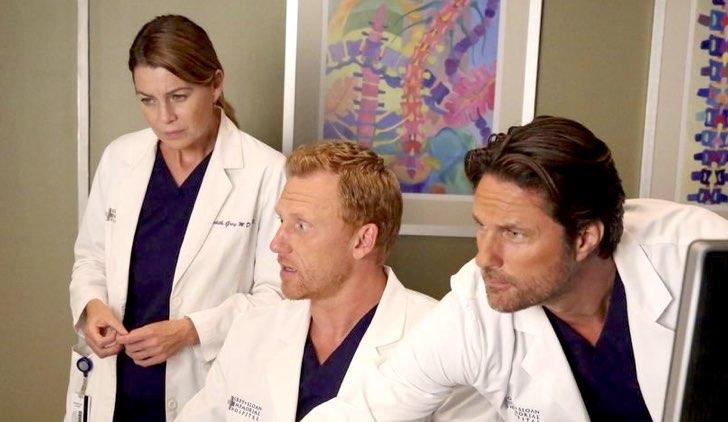 Grey's Anatomy 14 torna su Fox Life: quando va in onda e il cast