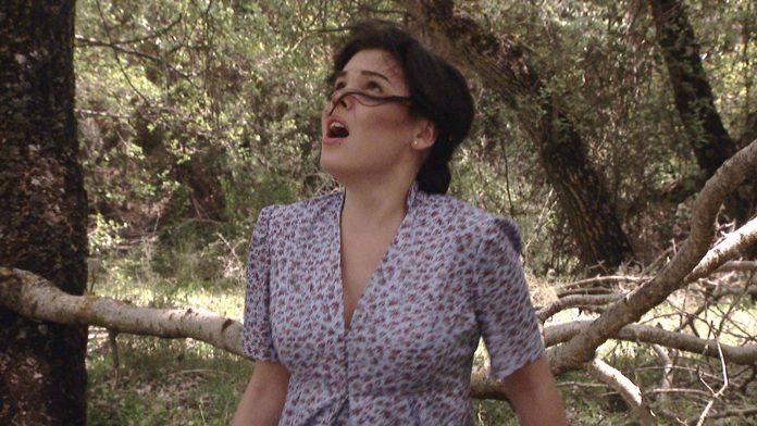Marcella nel bosco, cade un albero