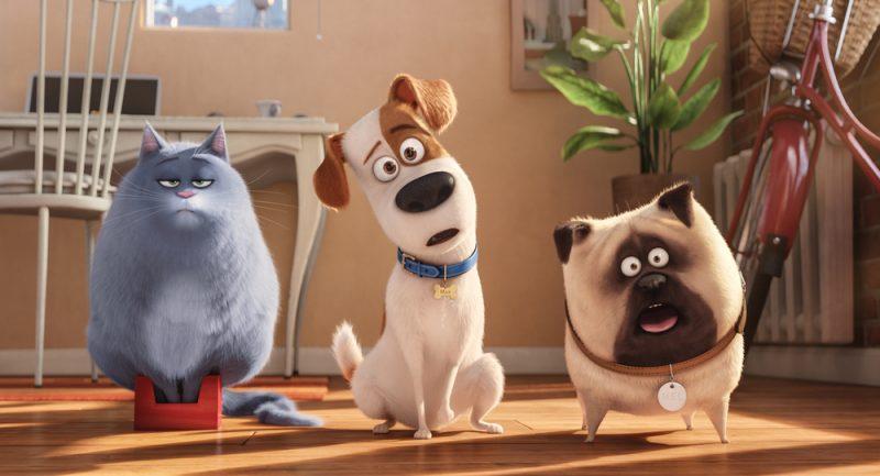 Il film consigliato oggi, sabato 17 marzo: Pets – Vita da an