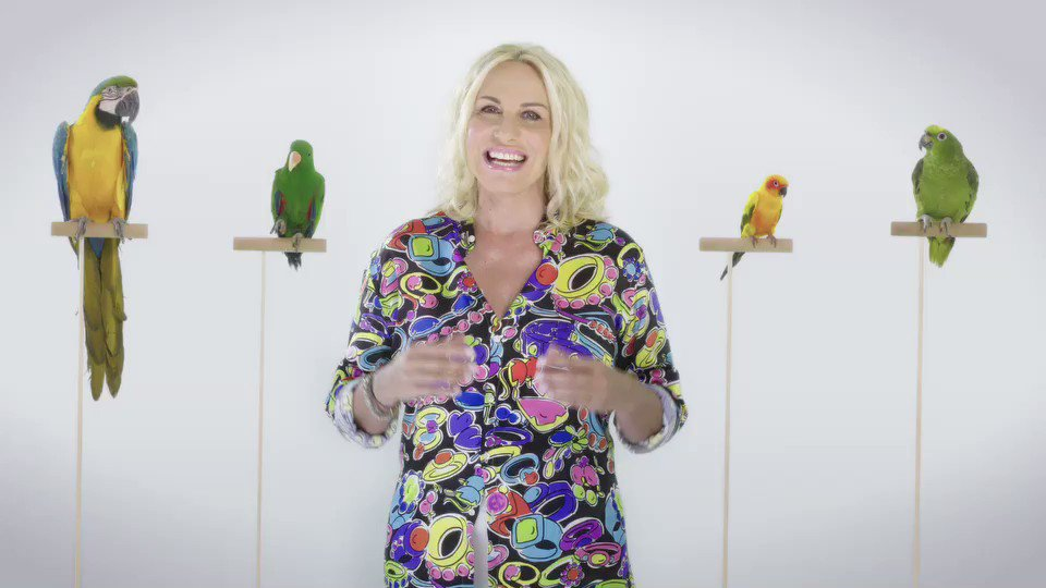 """Portobello, da sabato 27 ottobre su Rai 1 con Antonella Clerici: """"la mia sfida più grande"""""""