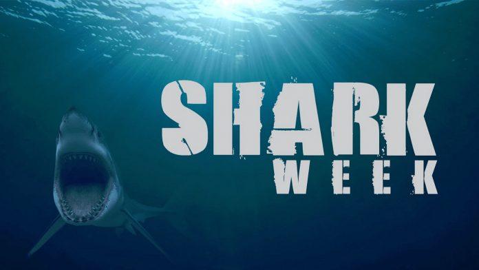 Shark Week - discovery