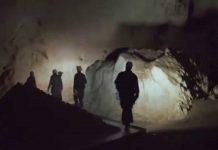 Cave of forgotten dreams - documentario