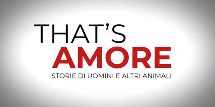 That's Amore, Duccio Forzano su Rai3